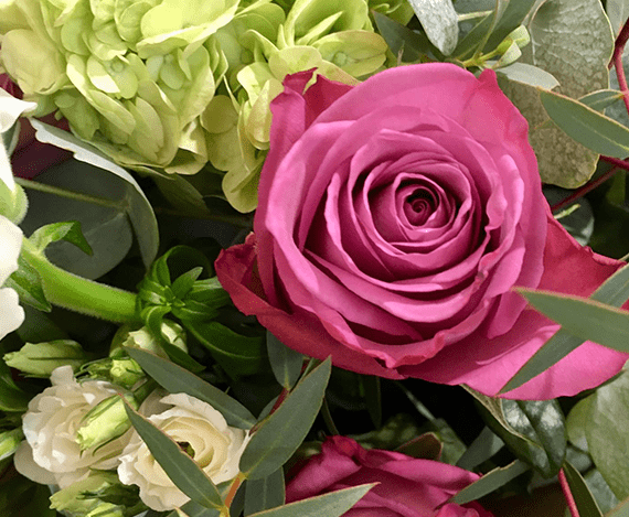 Image_of_Columbian_Rose_Bouquet_Wild_Flower_Studio_Image_Created_by_Jennifer_Cornish_Design_Newbury.png